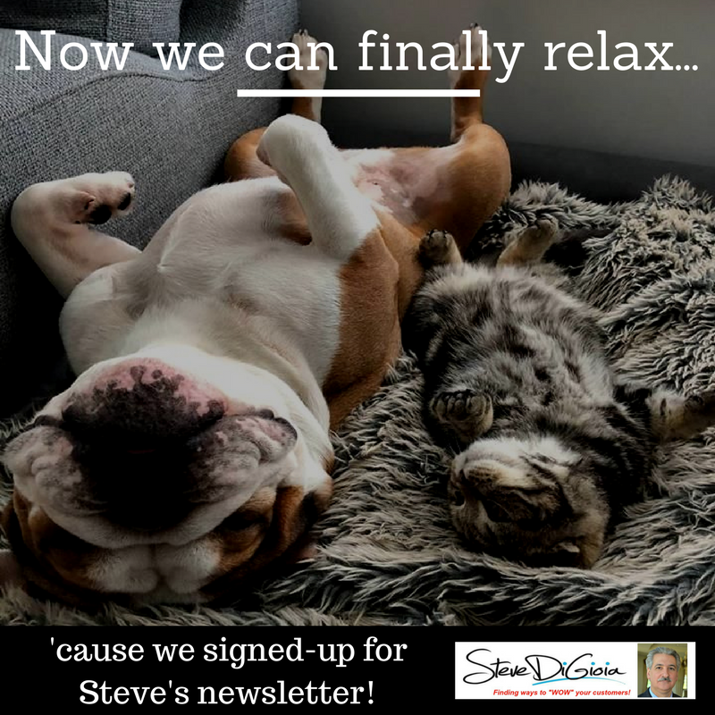 We Can Finally Rest - Pets Newsletter