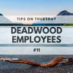 What Do You Do With Deadwood Employees? – Tip #11